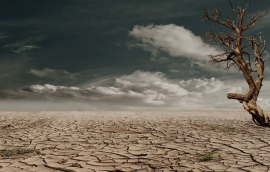 Protracted drought is one of the devastating effects climate change.