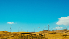 The Department of Energy has opened bid window five of the Renewable Energy Independent Power Producer Procurement Programme to procure 2 600 megawatts of wind and solar power to support the National Grid