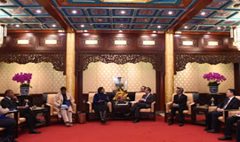 SA and China's bilateral diplomatic relationship is at the level of a CSP